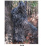 Ultralight-ghillie-poncho-2